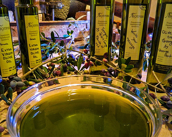 Liotrivi Olive & Olive Oil Tasting Experience